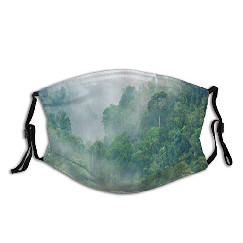 Nature Forest Foggy Pine Trees Jungle Landscape in Mountain Dust Mouth cover Face Cover Washable Reusable,Dustproof,Cycling