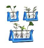 LXRZLS Jarrón de la Mesa de Flores Bricolaje Mesa de estantería de Escritorio Mesa Creativa Soporte de Madera Vidrio Terrarium Contenedor Jardinera Hidropónica - (Color: Azul 3pcs)