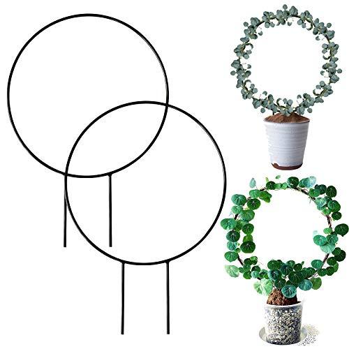 Enrejado de hierro para jardín, 2 piezas de enrejado para plantas trepadoras, plantas decorativas en macetas, soporte para plantas de alambre, soporte para trepar, para interior exterior plantas
