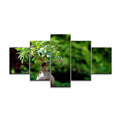 Night in U.S Canvas Art Wall Fig Bonsai Tree Plant ficus microcarpa Ginseng White Flower Pot Paintings Vintage Prints Home Decor Artworks Gift Ready to Hang for Living Room 5 Panels Large Size