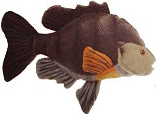 Cabin Critters Sunfish 7