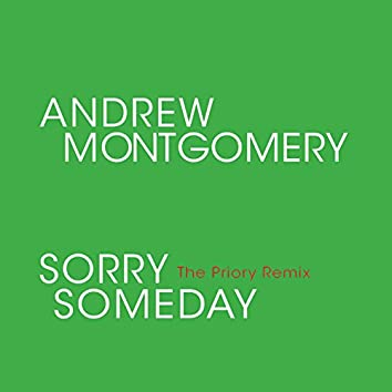Sorry Someday (The Priory Remix)