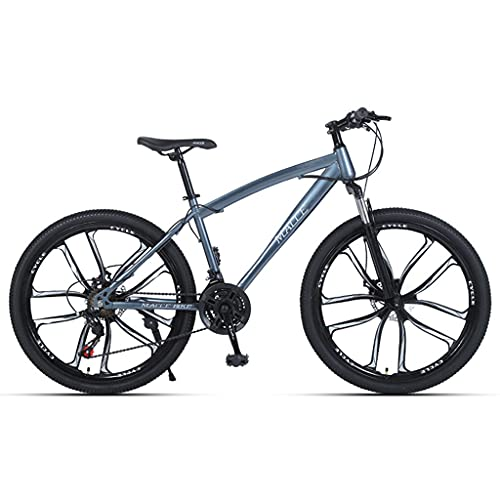 LHQ-HQ Bicicleta De Montaña para Adultos, Rueda De 26', 27 Velocidades, Suspensión De Horquilla, Freno De Disco, Bicicletas MTB Adecuadas para Hombres/Mujeres/Adolescentes,Gris