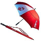 Delta Sigma Theta 30'' Wind Resistant Auto Open Folding Umbrella
