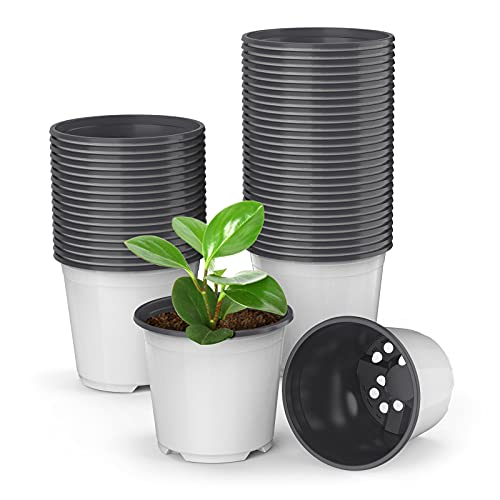 Best <strong>Nursery Pot Variety Pack</strong>
