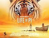 JUNLIZHU Life of Pi (78cm x 60cm | 31inch x 24inch) Silk