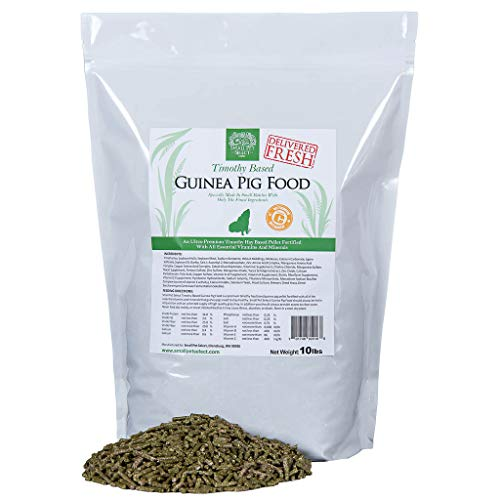 Small Pet Select Guinea Pig Food Pellets, 10-Pound