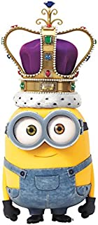 Best despicable me 2 cover photo Reviews