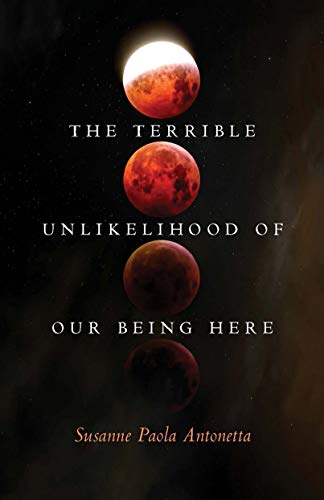 The Terrible Unlikelihood of Our Being Here (21st Century Essays Book 1)