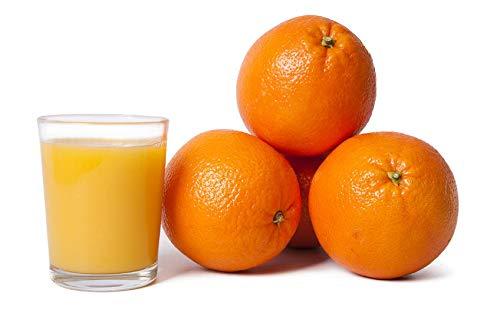 FRUCHTVERSAND24® Orangen, Saftorangen, Inhalt: 8kg, Ideal zum auspressen, süß saftig lecker, das Original, Qualität vom Fachmann