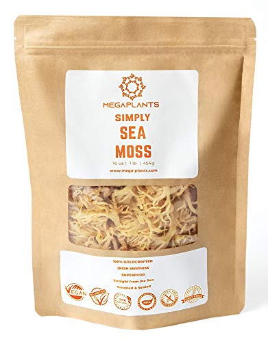 MegaPlants Simply Sea Moss | 16 Oz | All Natural | Wildcrafted | Non GMO No Preservatives | Marine Protected Area | Clean Nutritious Irish SeaMoss