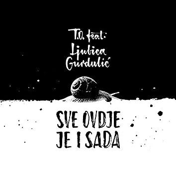 Sve ovdje je i sada (feat. Ljubica Gurdulić)
