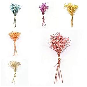 Silk Flower Arrangements ERSHIYI 6pcs/Set Natural Gypsophila Dried Flowers, Mini Babies Breath Flowers Plants Bouquets for Home Decoration,Photo Props,Wedding,DIY Decor(6Pcs/Set)