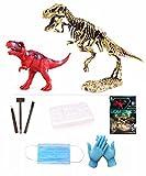 LITTLEFUN Dinosaur Fossil Excavation Archeology Toy STEM Dig Gift 3D Dino Skeleton for Kids Science Education (T-Rex Excavation Kit & Model)