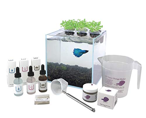 Aquaponics Planter Kit for Betta Fish with Rimless Glass Tank, Planter Lid, Pots, Medium, Lava Rock Gravel, Stainless Net, Fish Food, Water Treatments, Good Bacteria, Transplanting Guide, and More