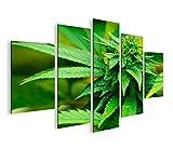 islandburner Bild Bilder auf Leinwand Weed Grass Ganja MF