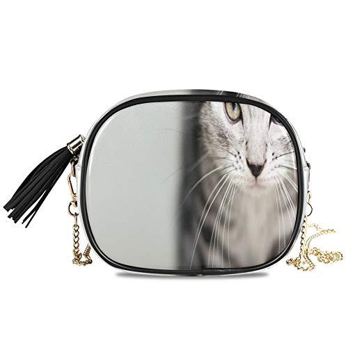 Lindo gatito gato americano de pelo corto con espacio de copia Bolsos...