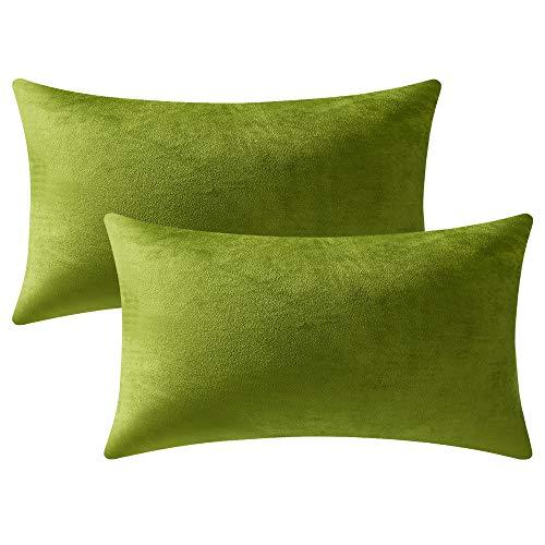 DEZENE 40cm x 60cm Gelblich-grüne Kissenbezüge: 2er Pack, Rechteckige, Dekorative Kissenbezüge aus Weichem Samt für das Sofa auf dem Bauernhof