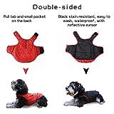 Zoom IMG-2 kinglead cappotto per cani double