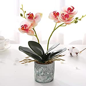 KINBEDY Artificial Bonsai Silk Orchids Phalaenopsis with Vase Home Office Decoration Party Wedding Decor