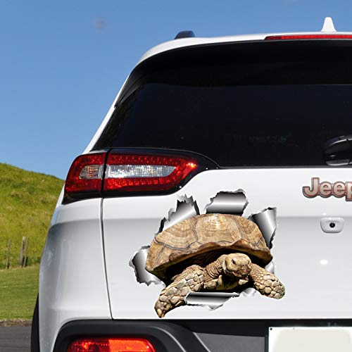 CLIFFBENNETT Schildkröte Autoaufkleber Autoaufkleber Schildkröten Aufkleber Autoaufkleber Autoaufkleber Autozubehör 3D Aufkleber O76