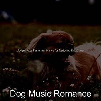 Modern Jazz Piano - Ambiance for Reducing Dog Stress