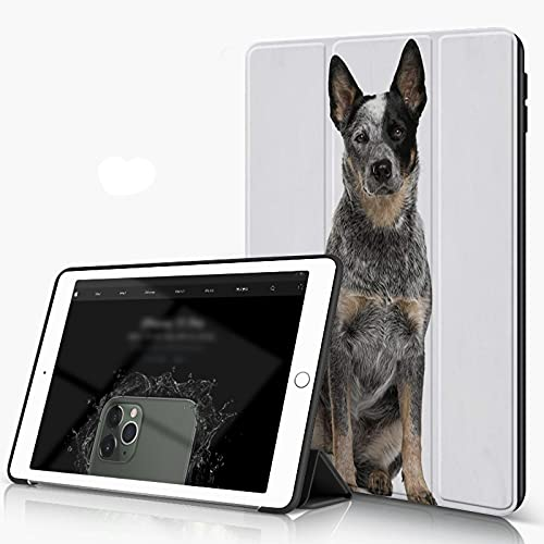 She Charm Carcasa para iPad 10.2 Inch, iPad Air 7.ª Generación,Perro de Ganado Australiano Sentado Delante de un Fondo Blanco,Incluye Soporte magnético y Funda para Dormir/Despertar