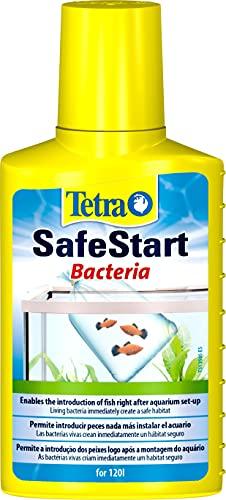 Tetra SafeStart 100ml - Permite introducir peces en el agua inmediatamente después de montar un acuario, Las bacterias vivas que contiene crean instantáneamente un hábitat biológicamente activo