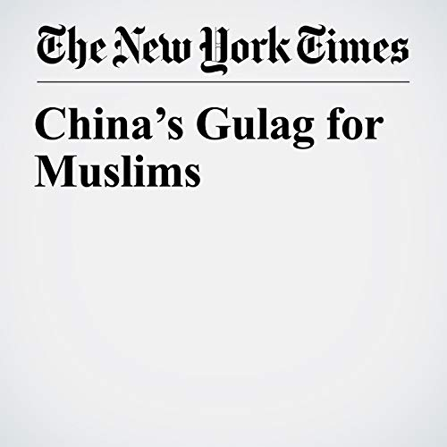China's Gulag for Muslims audiobook cover art