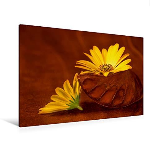 CALVENDO Premium Textil-Leinwand 120 cm x 80 cm quer, EIN Motiv aus dem Kalender BlumenART   Wandbild, Bild auf Keilrahmen, Fertigbild auf echter Leinwand, Leinwanddruck: Duo Natur Natur