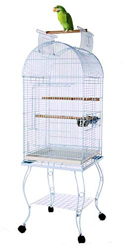 Mcage 65-Inch Open Dome Top Bird Parrot Cage with Rolling Standing for Cockatiels Sun Conures Parakeets Conures Quaker Green Cheek