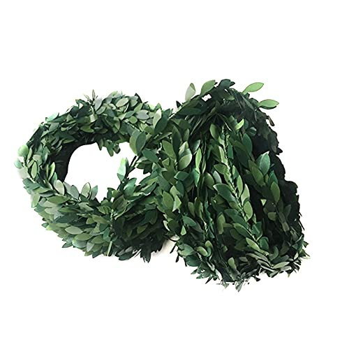 Artificial Rattan Wreath, Front Door Wreaths for All Seasons, Artificial Green Leaves Wreath Home Wall Showcase Decoration Wreath Holiday Front Door Decor