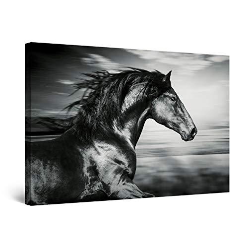 Startonight Cuadro Moderno en Lienzo - Caballo Negro Corriendo - Pintura Animales para Salon Decoración Grande 80 x 120 cm