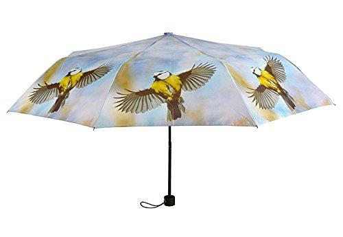 zeitzone Regenschirm Vogel Taschenschirm faltbar Schirm