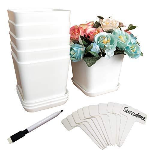 Snowve Macetas de plástico con platillo, 6 unidades, 6 unidades, con 10 etiquetas para plantas, 9 cm, color blanco, para orquídeas de aloe vera, albahaca, frescas