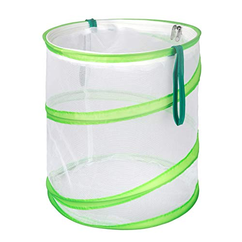 RESTCLOUD Insect and Butterfly Habitat Cage Terrarium Now $13.99 (Was $24.99)