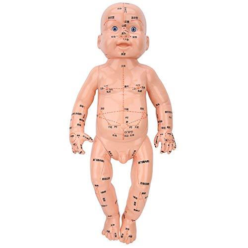 Enseñanza de meridianos corporales para niños, modelo de masaje para niños, escuela de aprendizaje de puntos de acupuntura seguros para enseñar operación de precisión
