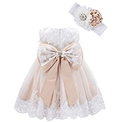 Champagne-butterfly Applique Dress with Headband With Rhinestones