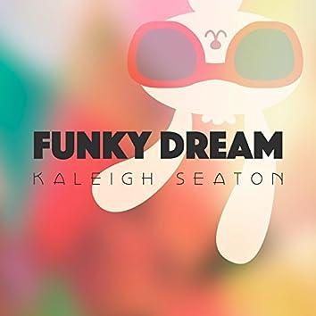 Funky Dream