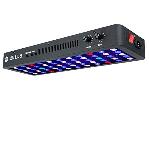 WILLS Newest 165W LED Lights