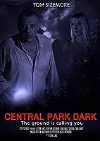 ダークセントラルパーク(2021)トムサイドモア/シビルレイクスリラー映画ポスターアートスティルスデコレーションリビングルームベッドルームキャンバス-20x30インチフレームなし