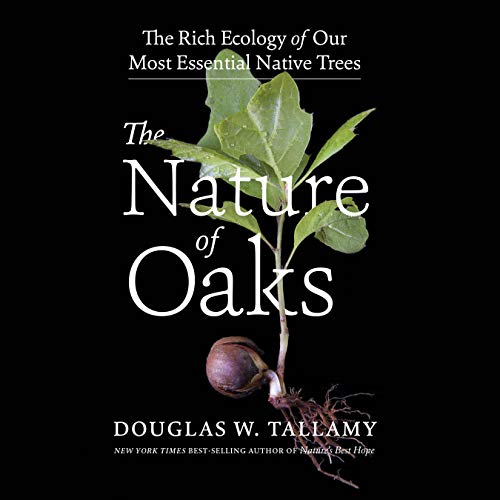 The Nature of Oaks Audiobook By Douglas W. Tallamy cover art