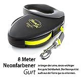 flexi Roll-Leine GIANT L 8 m Gurt für Hunde bis 50 kg, schwarz / neongelb - 2