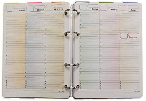 Recambio de papel para archivador A5 con 4 agujeros (Agenda sin fechas...