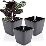 GreenSun Self-Watering Planter