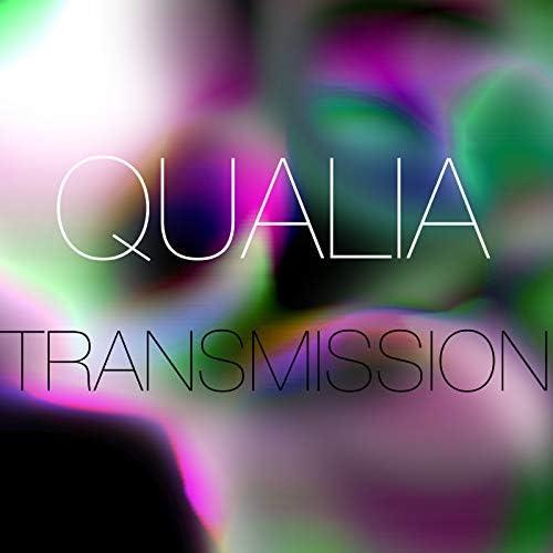 The Qualia