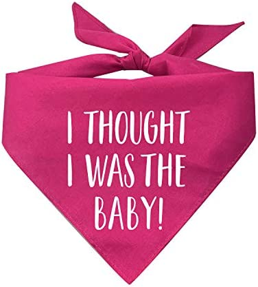 Tees Tails I Thought I was The Baby Pregnancy Announcement Triangle Dog Bandana Assorted Colors product image
