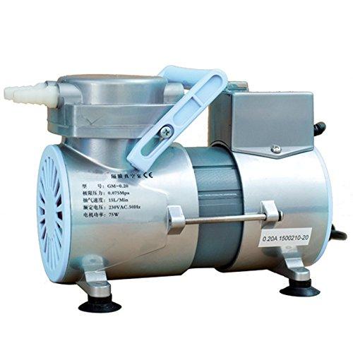 Holdwell Oil Free Diaphragm Lab Vacuum Pump GM-0.20 for Chromatograph 15L/Min