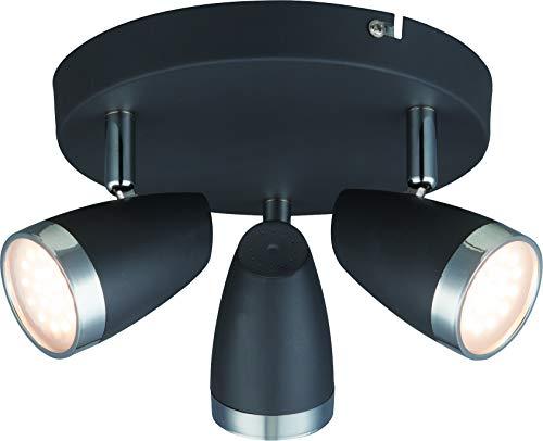 DM Leuchten Deckenlampe rund LED Lampe schwenkbar 3 flammig inkl. Leuchtmittel 3x 4 Watt, warmweiß, LED Deckenleuchte LED Strahler LED Spot, Anthrazit