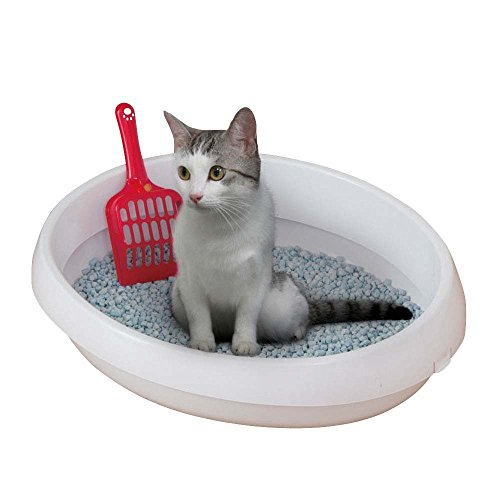 Iris Ohyama, Litière / bac à litière, rebord amovible, intérieur poli, compact, pelle incluse, pour chat - Cat Toilet PNE-480 - Blanc